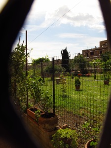 Hidden garden, San Gimignano Italy