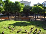Unusual sights around Athens