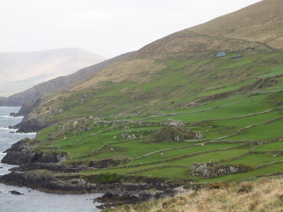 Where the green meets the ocean, Ireland