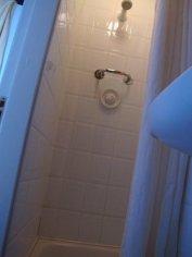 shower control