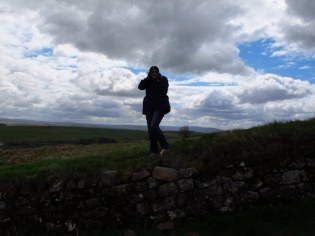Looney tune on Hadrian's Wall
