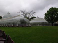 Kibble Palace greenhouse at the Botanic Gardens Glasgow