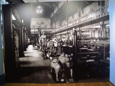 What the Hunterian used to look like