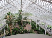 Winter Garden, Glasgow