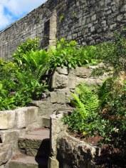 York Museum Botanical Gardens