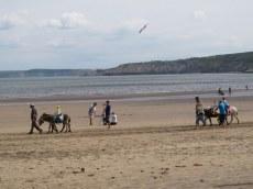 Donkey rides on the beach, Scarborough, England