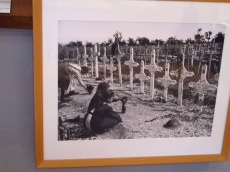Such sad photos, crosses on soldiers graves on the Somme battlefields in France