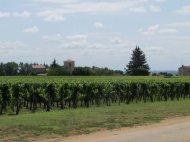 Bordeaux region of France