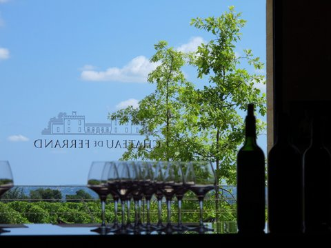 Chateau de Ferrand and wine tasting in France