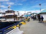 Heading to Plancius, Ushuaia port