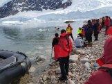 Polar plunge onlookers