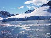 Orne Harbour Antarctica