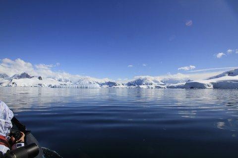 Whale watching around Enterprise Islands Antarctica