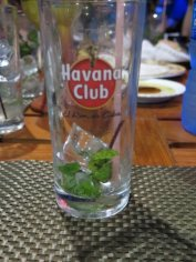 The first of many enjoyable mojitos.......