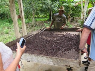 Cocoa farm tour at Baracoa